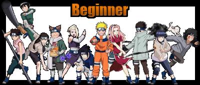 Beginner Saga